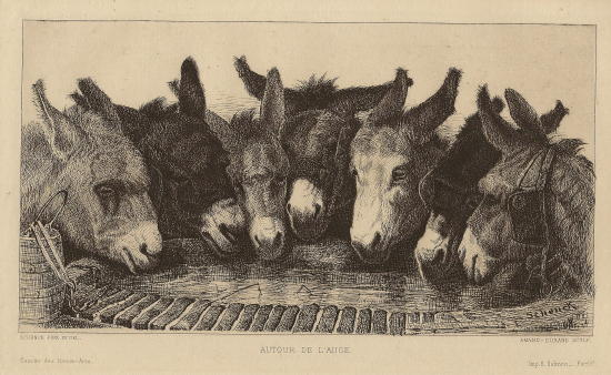 donkeys_at_well.small.jpg